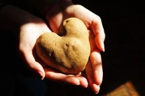 patate_des_varese